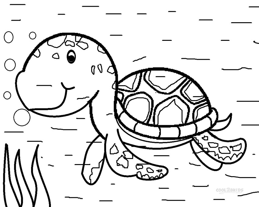 baby sea turtle coloring page babies coloring and baby turtles on pinterest coloring sea baby turtle page
