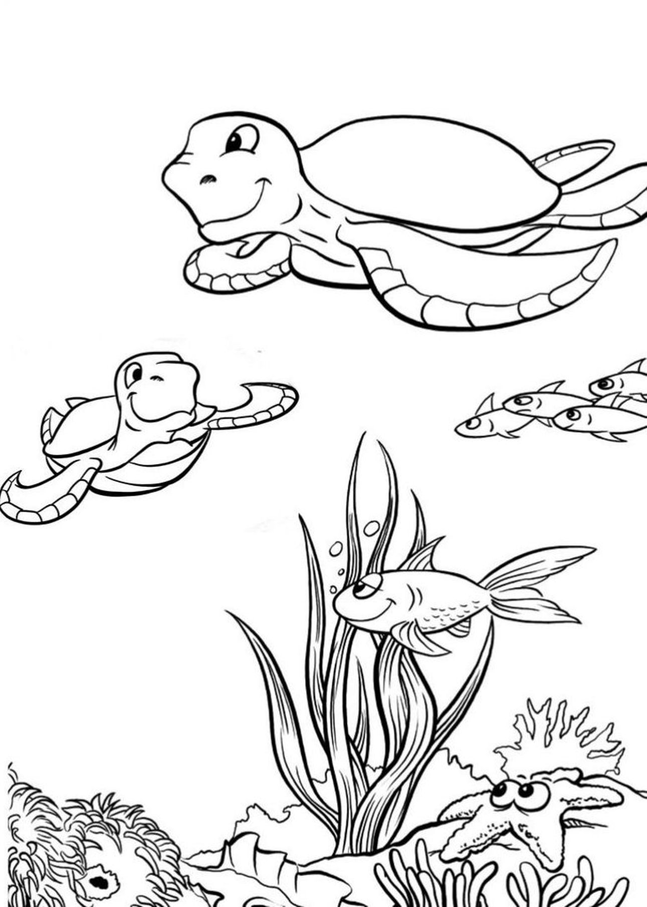 baby sea turtle coloring page baby sea turtle coloring page turtle coloring baby page sea