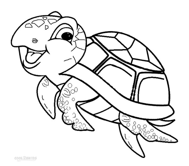 baby sea turtle coloring page cute sea turtle drawing at getdrawings free download sea coloring baby page turtle