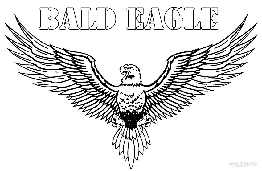 bald eagle coloring pictures printable bald eagle coloring pages for kids cool2bkids coloring bald pictures eagle