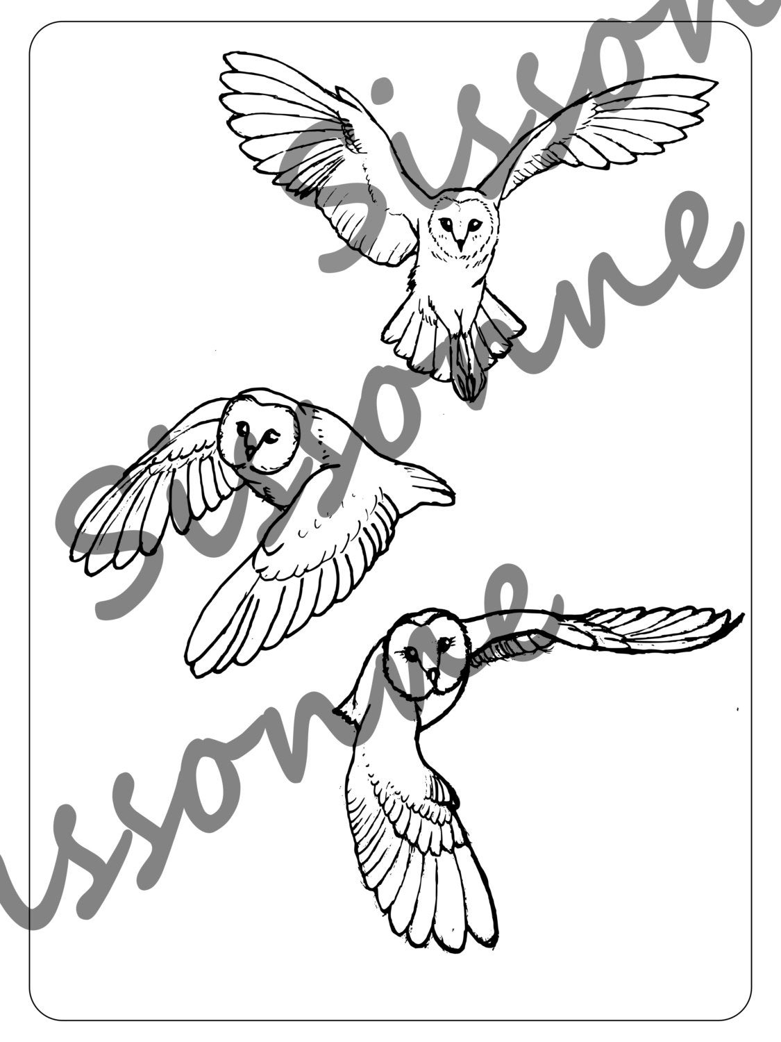 barn owl coloring pages printable barn owls in flight coloring page instant pdf download coloring owl barn printable pages