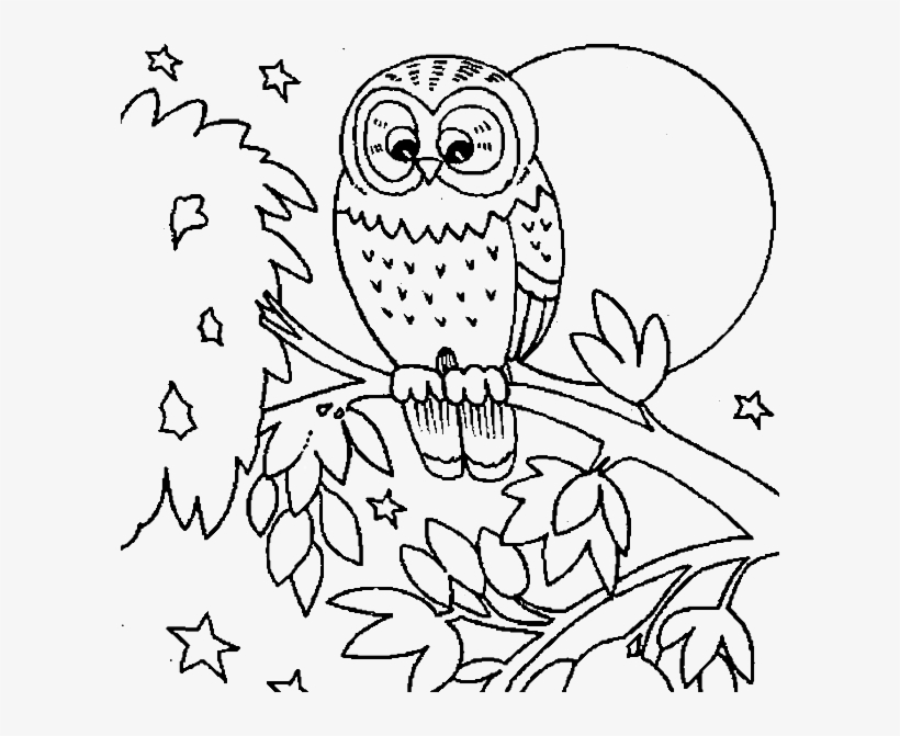 barn owl coloring pages printable cute owls coloring pages coloring home pages coloring owl barn printable