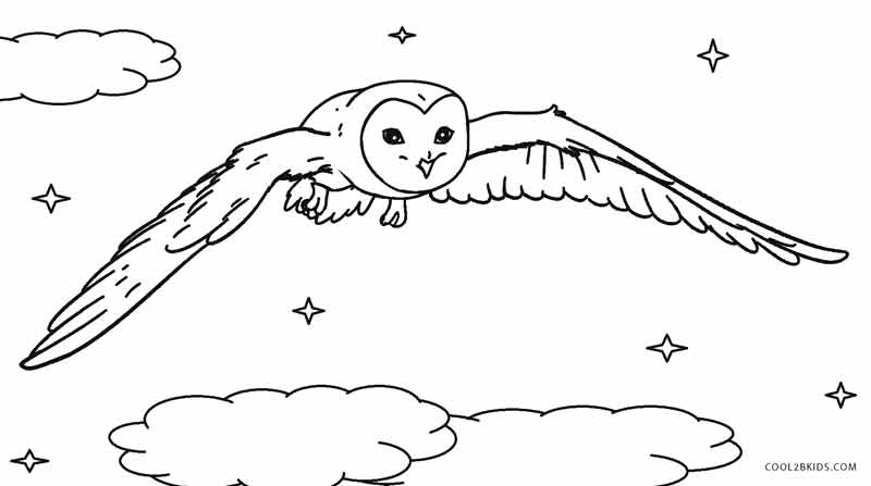 barn owl coloring pages printable free printable owl coloring pages for kids cool2bkids coloring barn pages printable owl