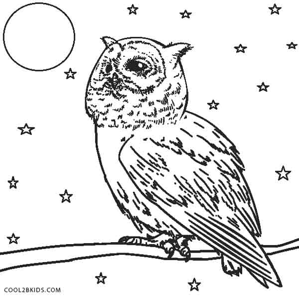 barn owl coloring pages printable free printable owl coloring pages for kids cool2bkids coloring barn printable owl pages