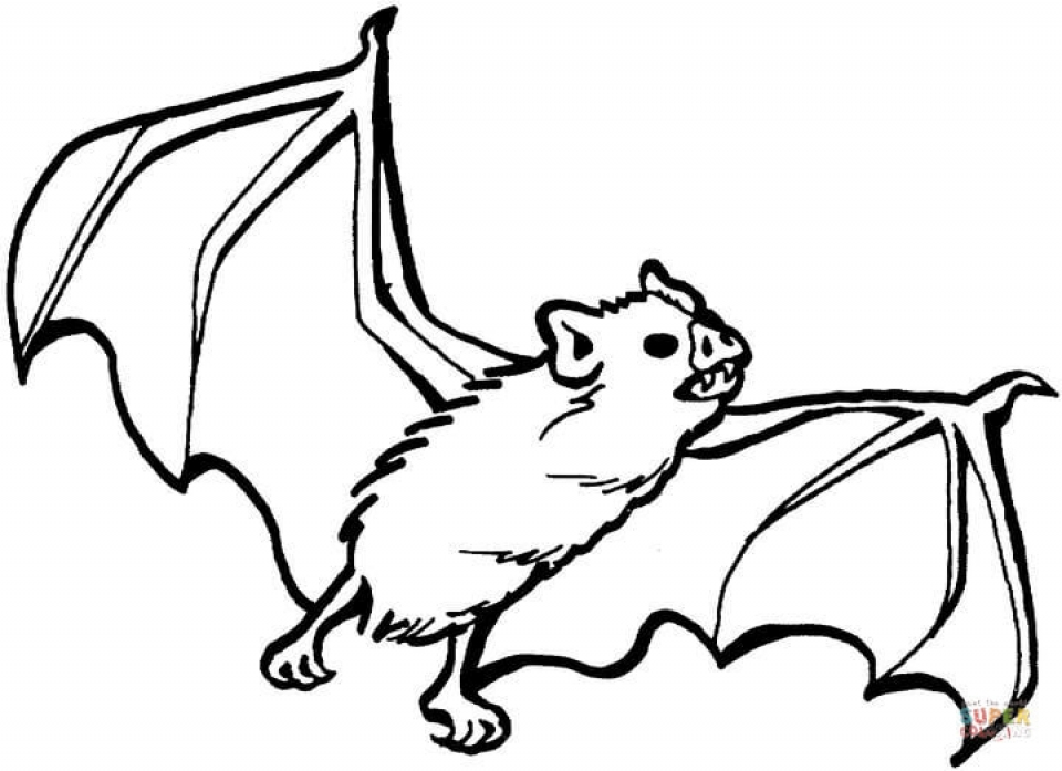 bats coloring pages to print get this bat coloring pages printable 73189 print bats pages to coloring