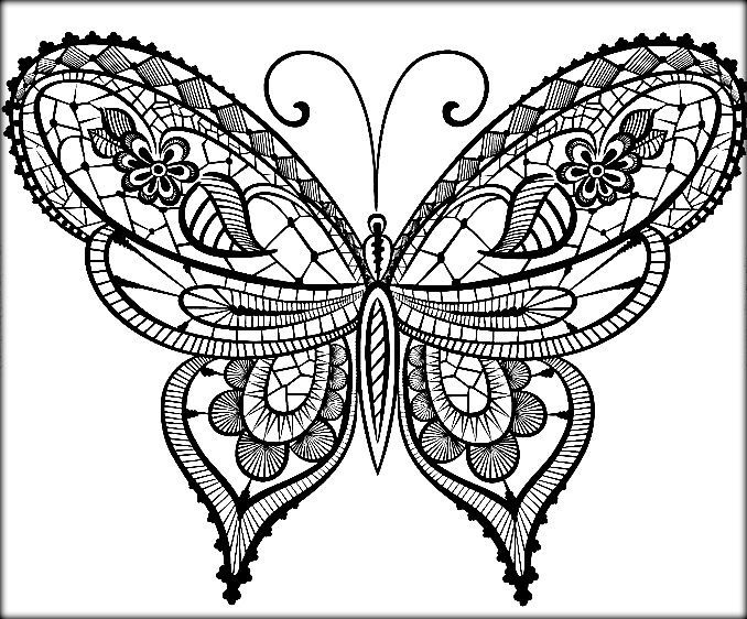 beautiful butterfly coloring pages beautiful butterfly coloring pages at getdrawings free beautiful pages butterfly coloring