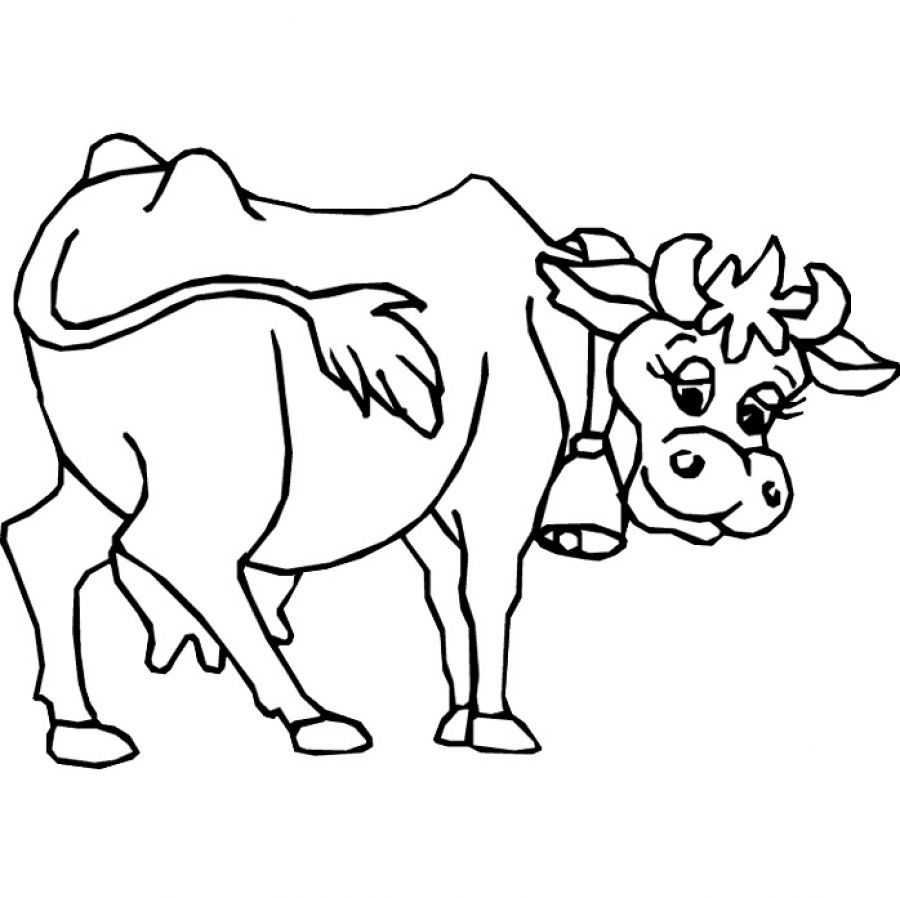 beef cow coloring pages angus beef cow coloring pages coloring pages pages cow beef coloring