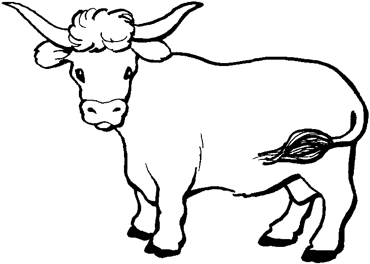 beef cow coloring pages beef coloring pages at getcoloringscom free printable cow pages coloring beef