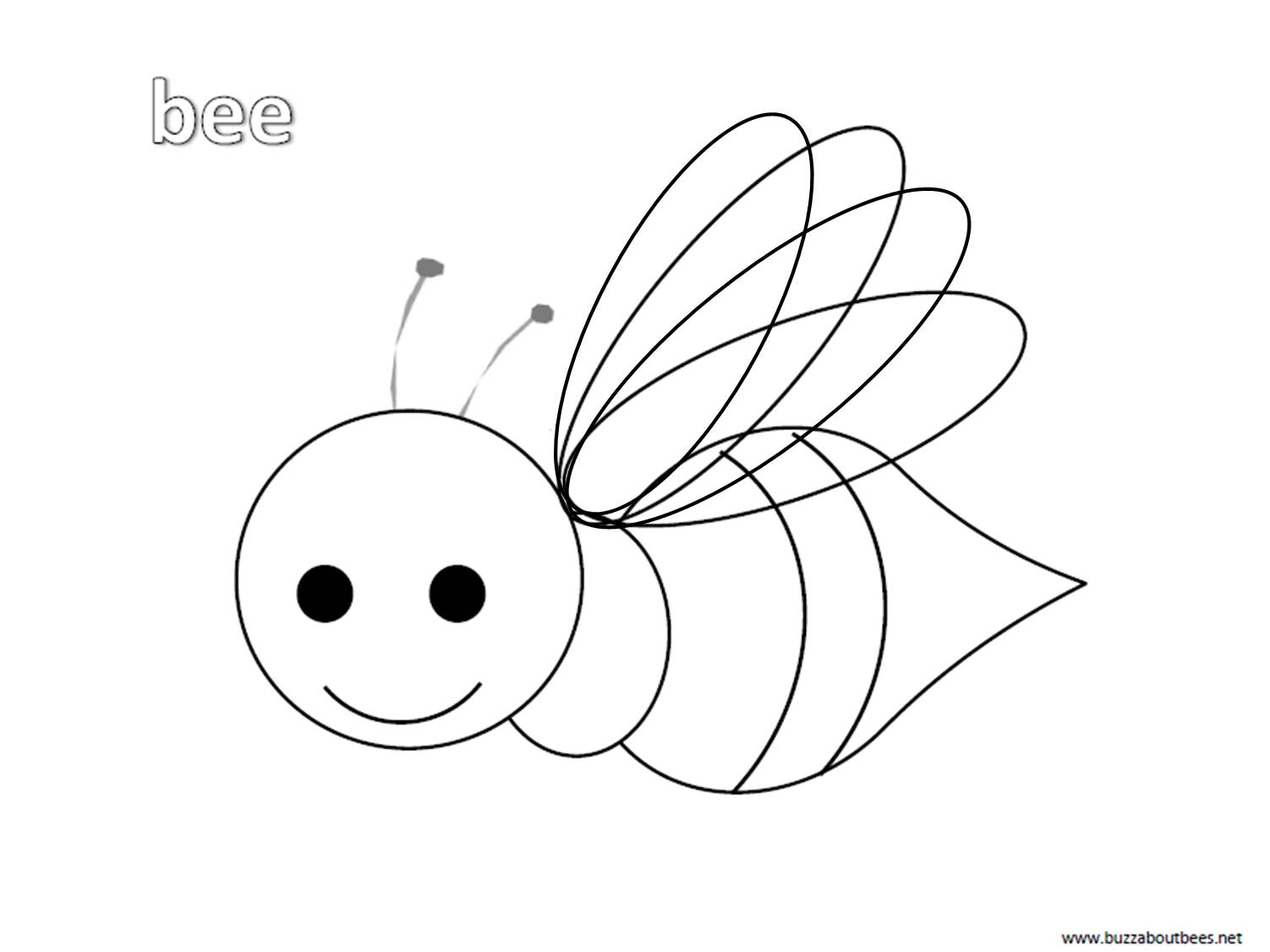 bees colouring pages bee coloring pages educational activity sheets and colouring pages bees