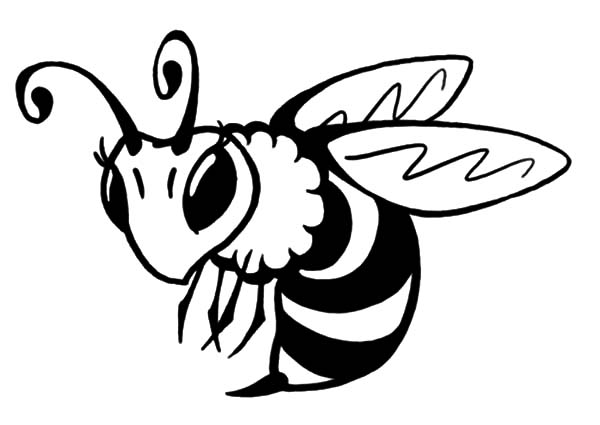 bees colouring pages bees coloring pages realistic realistic coloring pages pages bees colouring