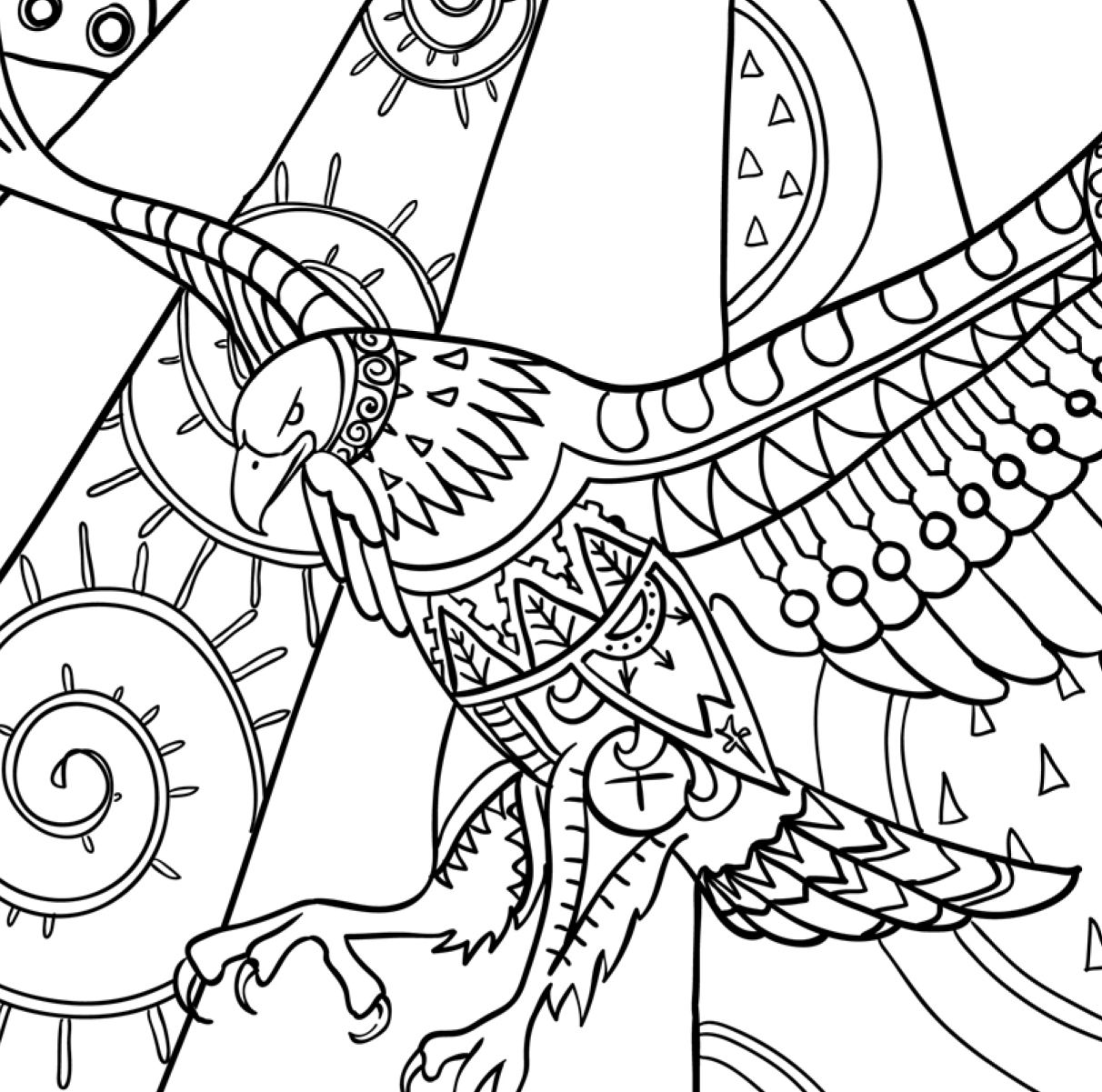 bird coloring pages for adults amazing birds adult coloring book review promotion pages for coloring adults bird