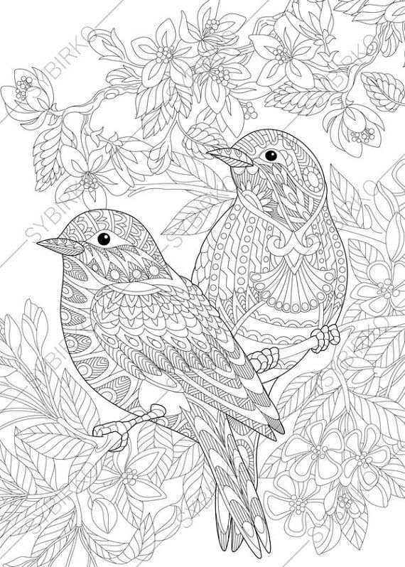 bird coloring pages for adults coloring pages for adults lovely birds couple spring adults coloring pages bird for