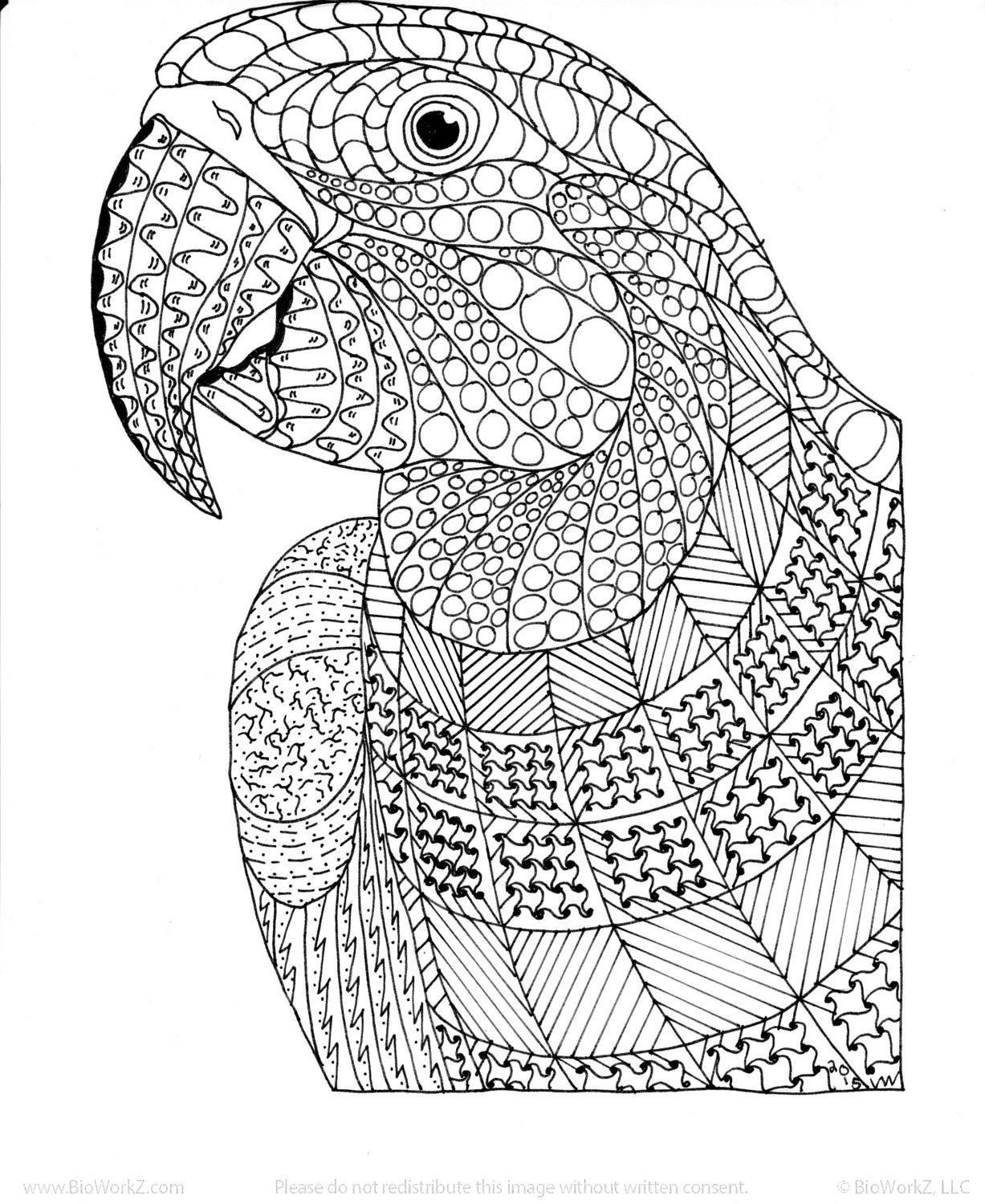 bird coloring pages for adults pin on adult coloring books adults for pages bird coloring