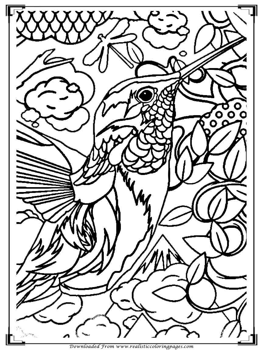 bird printout printable birds coloring pages for adults realistic bird printout