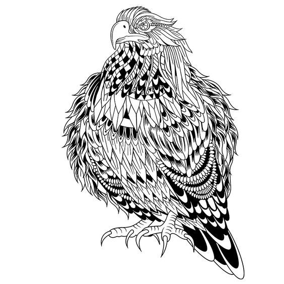 birds of prey coloring pages birds of prey printable coloring pages print color craft coloring of birds pages prey
