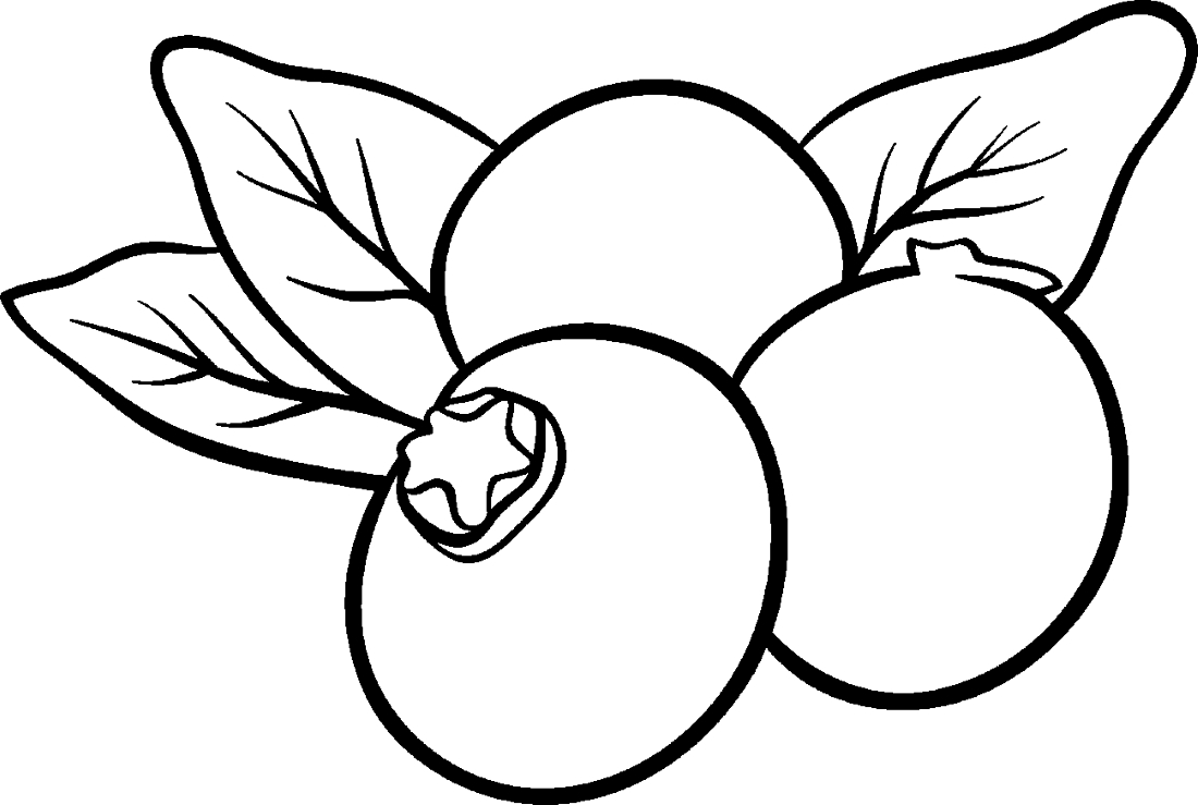 blueberry coloring page blueberries coloring pages coloring pages to download coloring page blueberry