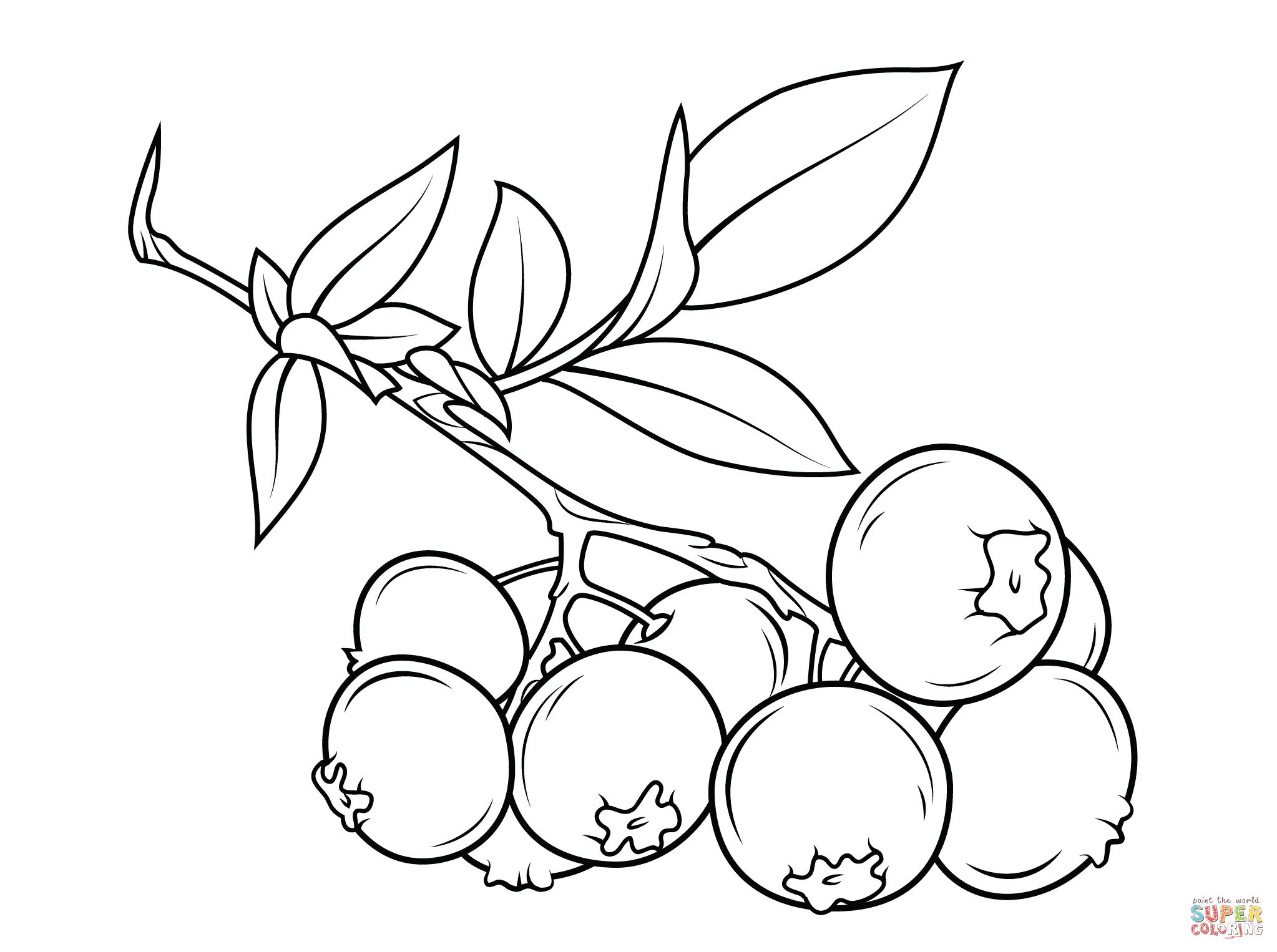 blueberry coloring page blueberries coloring pages to download and print for free blueberry coloring page