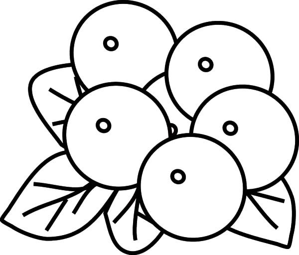 blueberry coloring page blueberries coloring pages to download and print for free page coloring blueberry