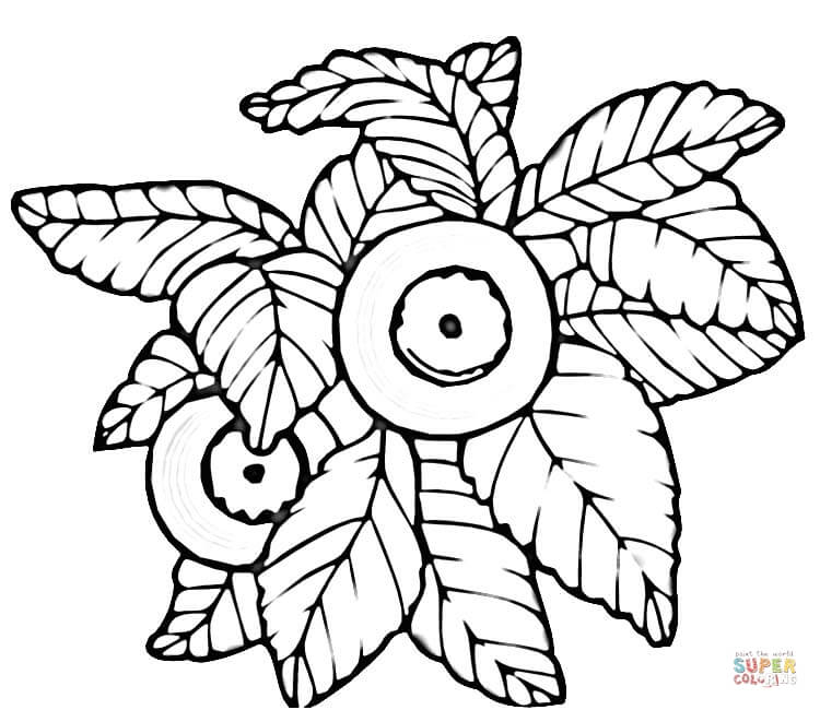 blueberry coloring page coloring page blueberries coloring blueberry page