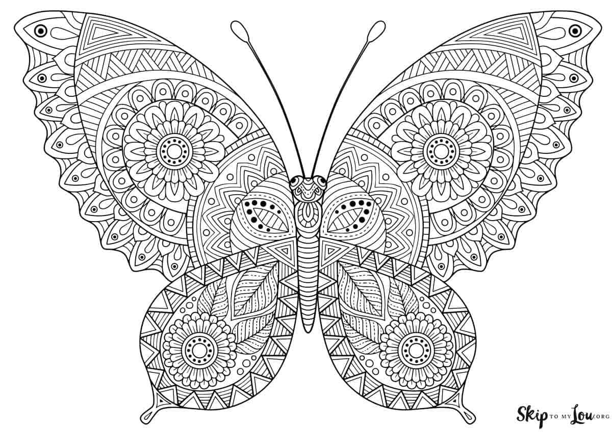 butterfly coloring pages free butterfly coloring pages team colors butterfly pages free coloring