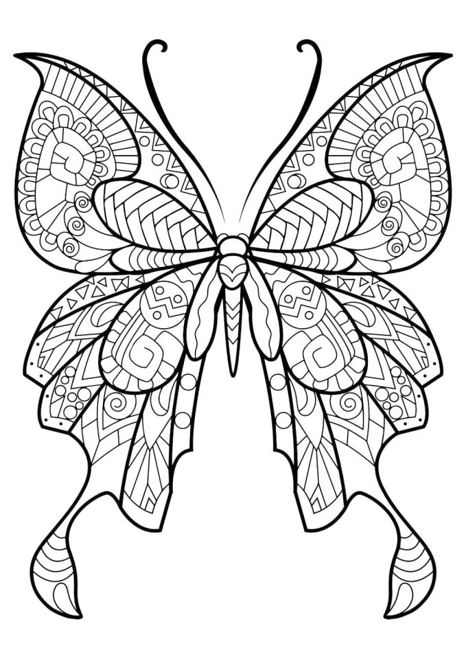 butterfly coloring pages free butterfly coloring pages team colors coloring pages free butterfly