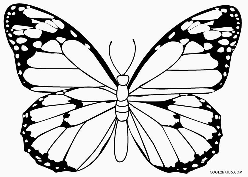 butterfly coloring pages free free printable butterfly coloring page in 2020 butterfly free butterfly pages coloring