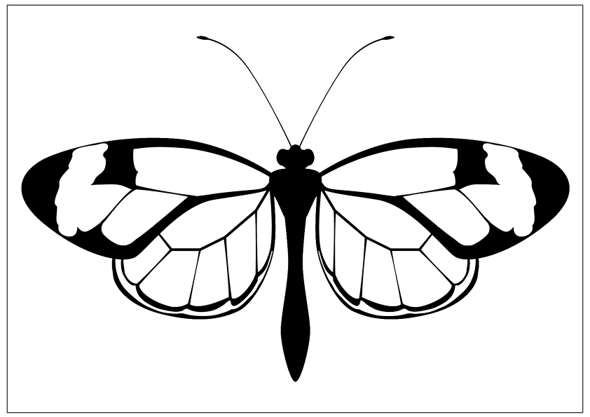 butterfly coloring pages free printable butterfly coloring pages for kids cool2bkids coloring pages free butterfly