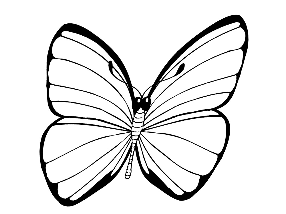 butterfly coloring pages free printable fun butterfly coloring pages for kids art hearty free butterfly coloring pages