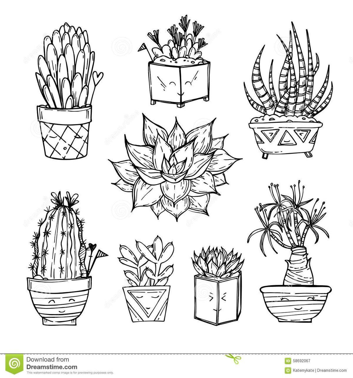 cactus drawing 17 best cactus printables images on pinterest desert art drawing cactus