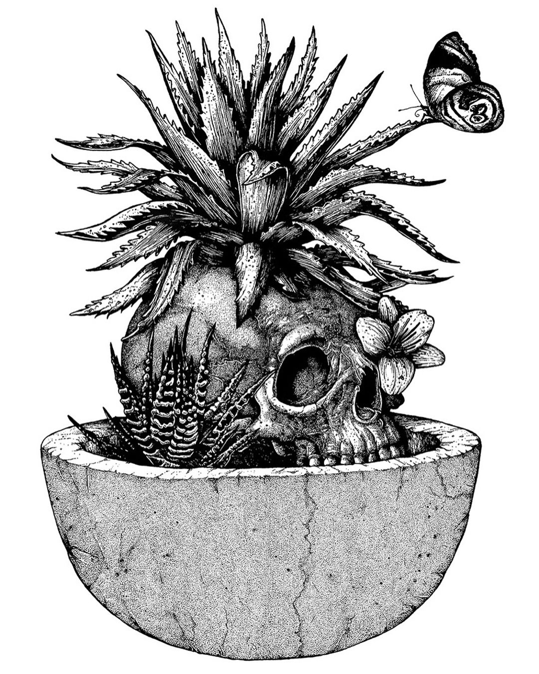 cactus drawing saguaro cactus sketch at paintingvalleycom explore cactus drawing