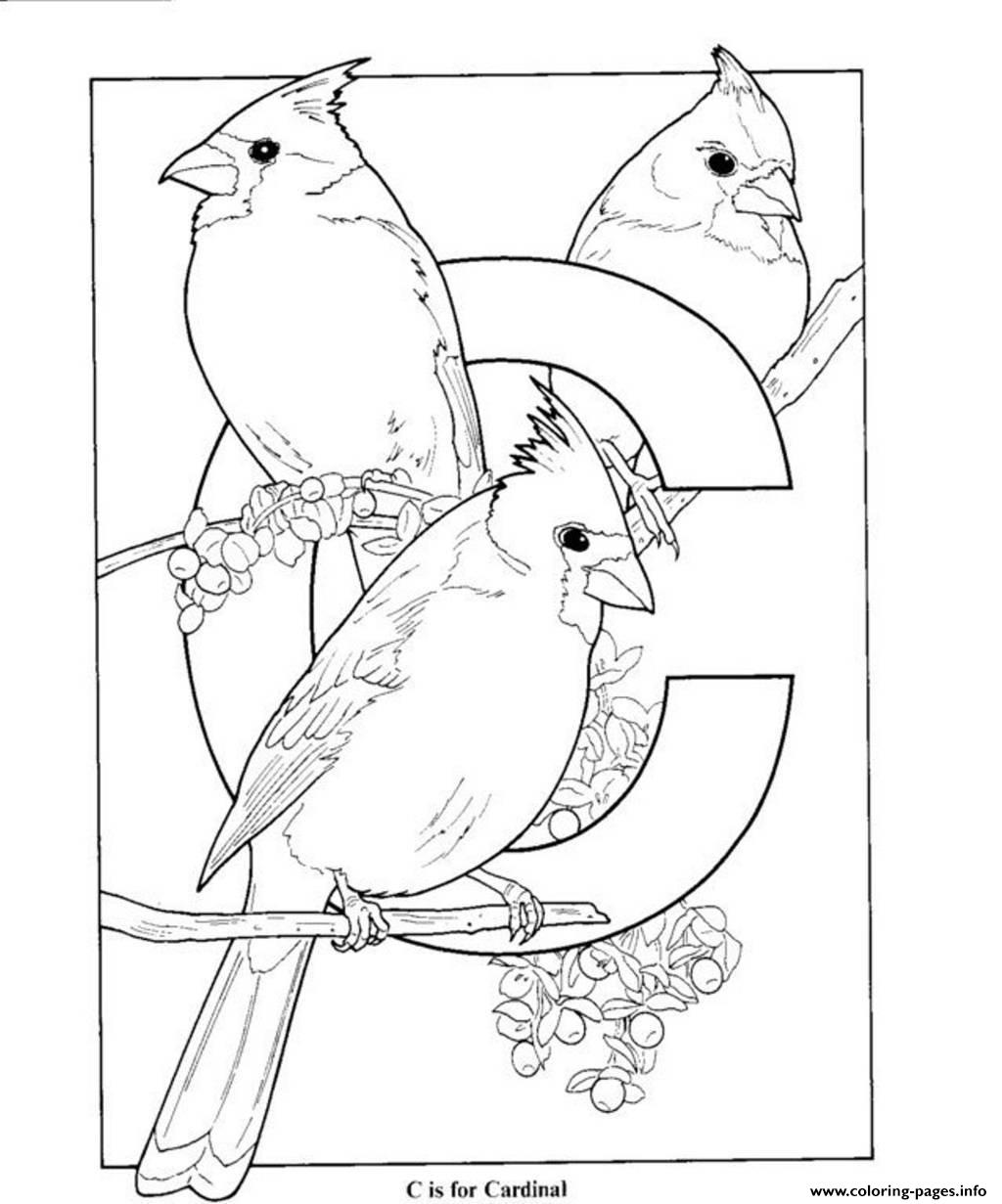cardinal coloring pages 30 free nfl coloring pages printable pages cardinal coloring