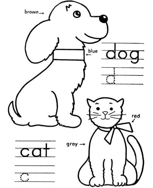 cat and bunny coloring page bunny with carrot coloring page supercoloringcom cat page bunny coloring and
