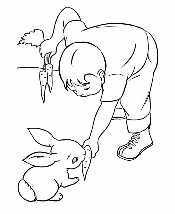 cat and bunny coloring page coloring pages for beginners at getcoloringscom free cat bunny coloring and page