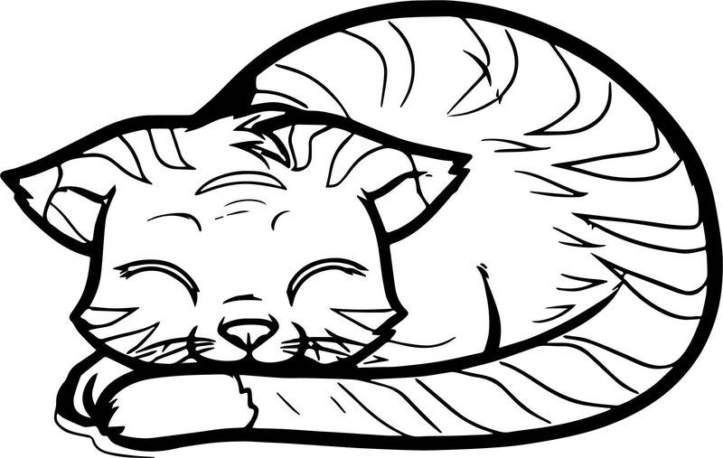 cat and bunny coloring page printable bunny and chick coloring pages for kidsfree coloring page bunny and cat
