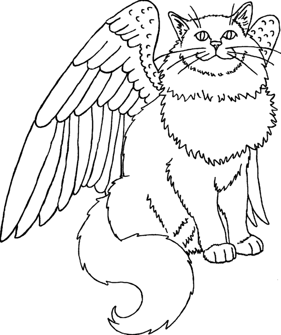 cat with wings coloring pages unicorn flying cat with butterfly wings cute cat coloring cat wings pages with coloring