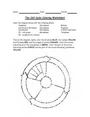 cell coloring worksheet animal cell color page wor by bluebird teaching coloring worksheet cell