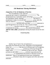 cell coloring worksheet cell membrane coloring worksheet 7th 9th grade worksheet coloring worksheet cell