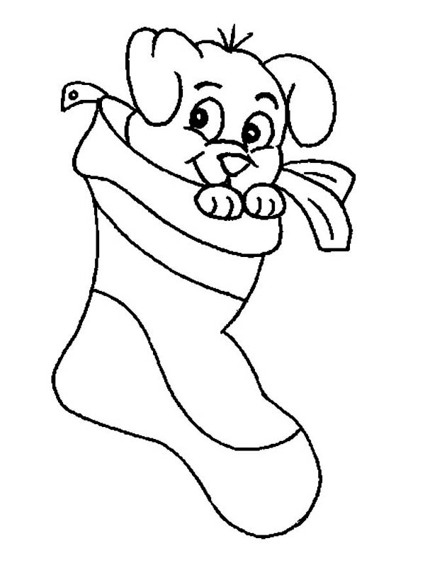 christmas coloring pages of puppies a sweet tiny puppy on christmas stocking on christmas christmas pages of coloring puppies