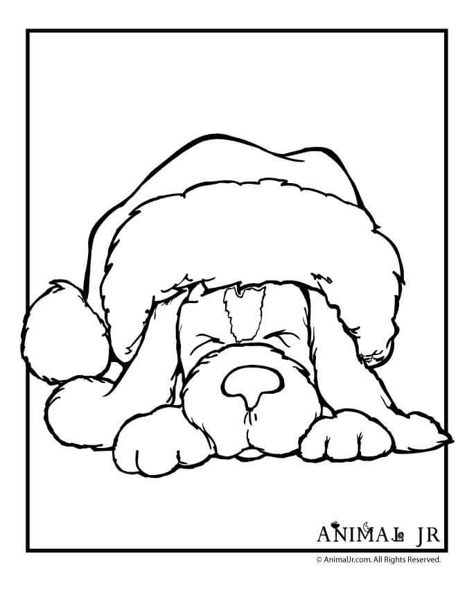 christmas coloring pages of puppies pin by renea allwood on just punch it puppy coloring pages christmas puppies of coloring