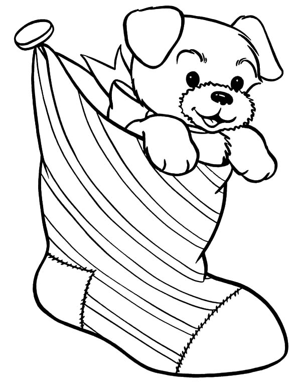 christmas coloring pages of puppies puppy for present in christmas stockings coloring pages of pages christmas coloring puppies