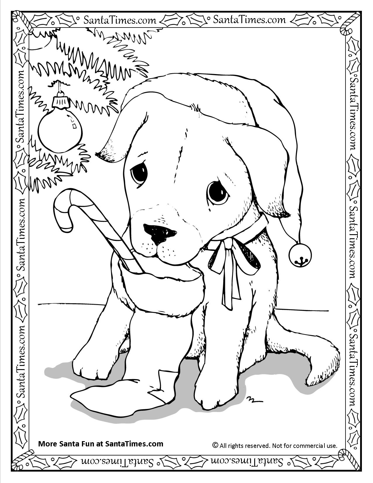 christmas dog coloring pages puppy christmas free coloring free coloring daily coloring christmas dog pages