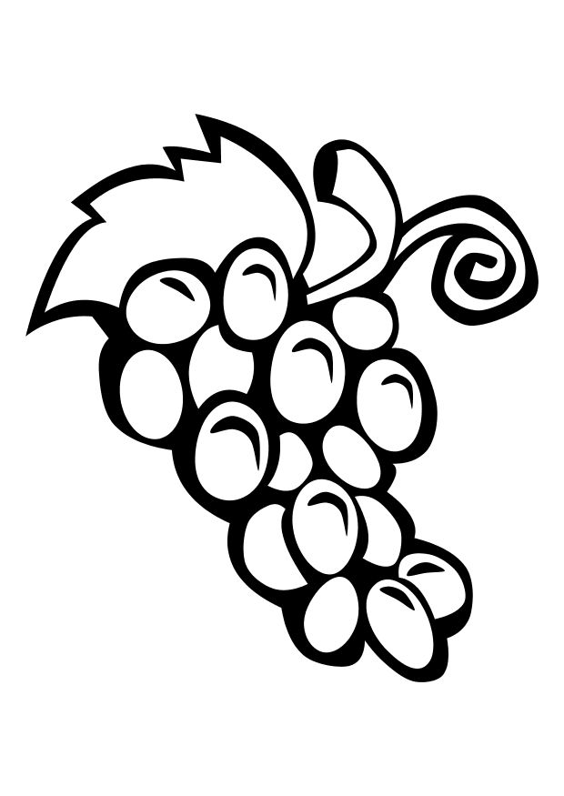 clipart for coloring free grapes coloring pages for coloring clipart