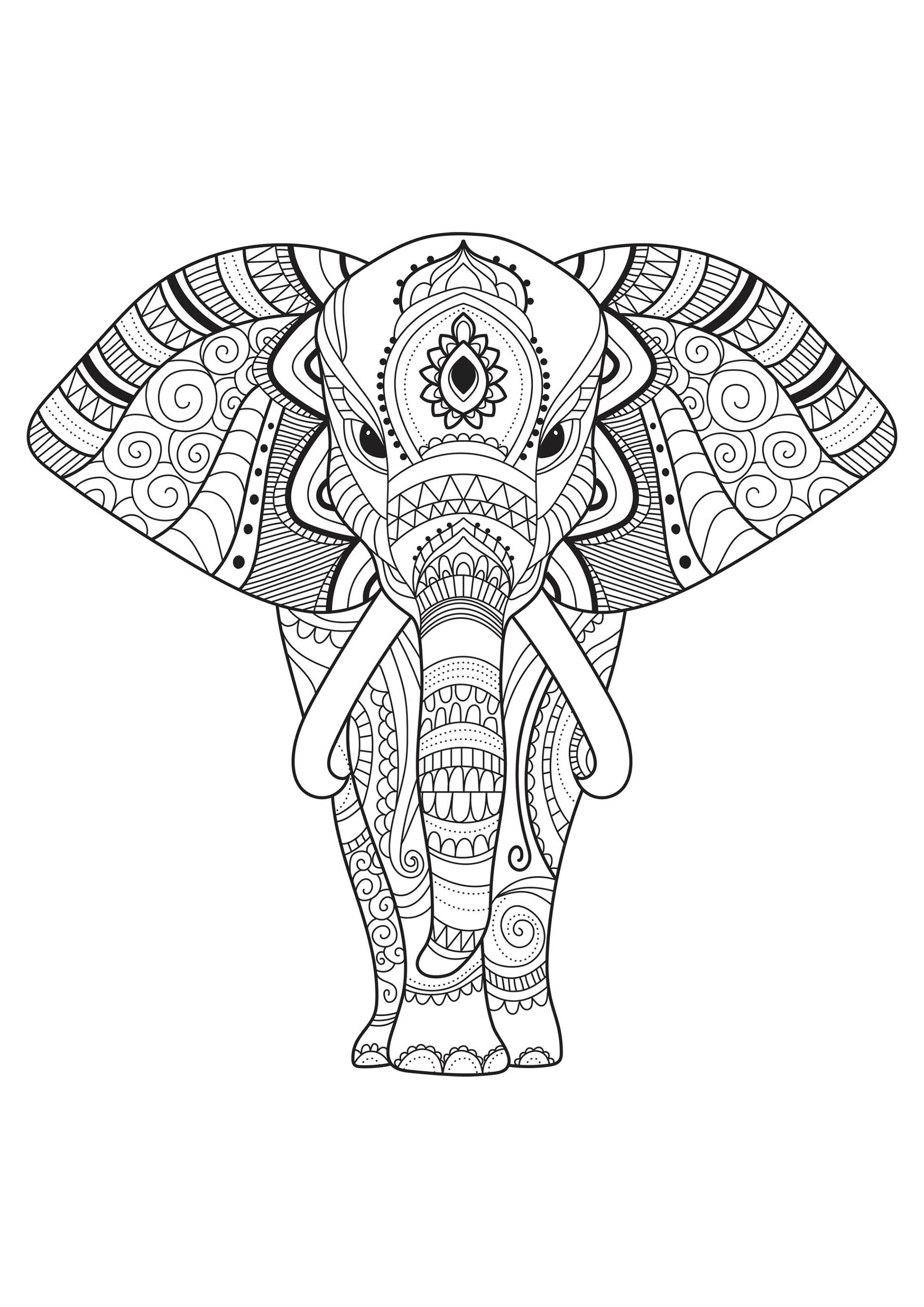 coloring book elephant images elephant and the baby elephant book coloring images elephant