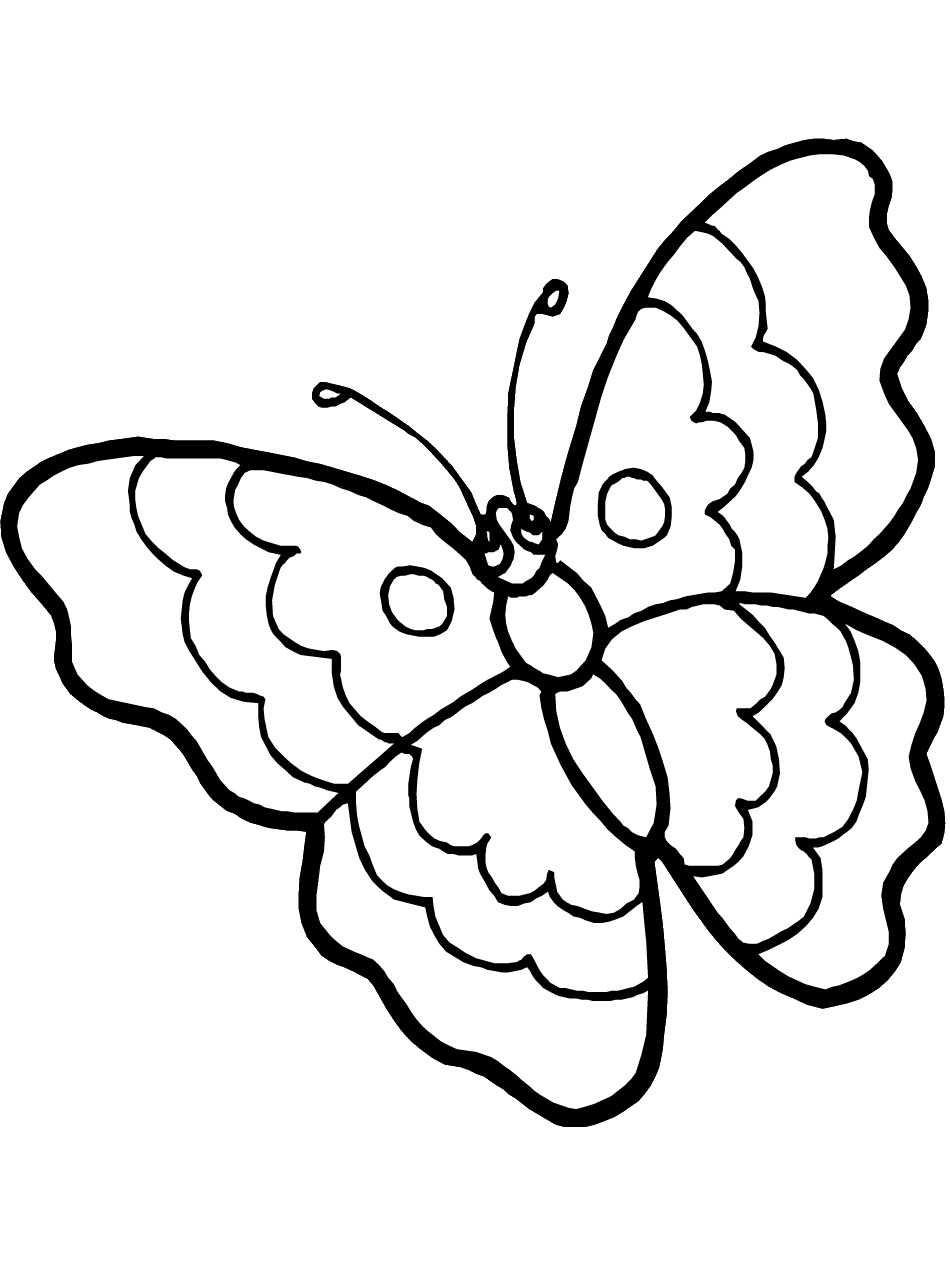 coloring butterfly butterfly coloring page dr odd butterfly coloring 1 1