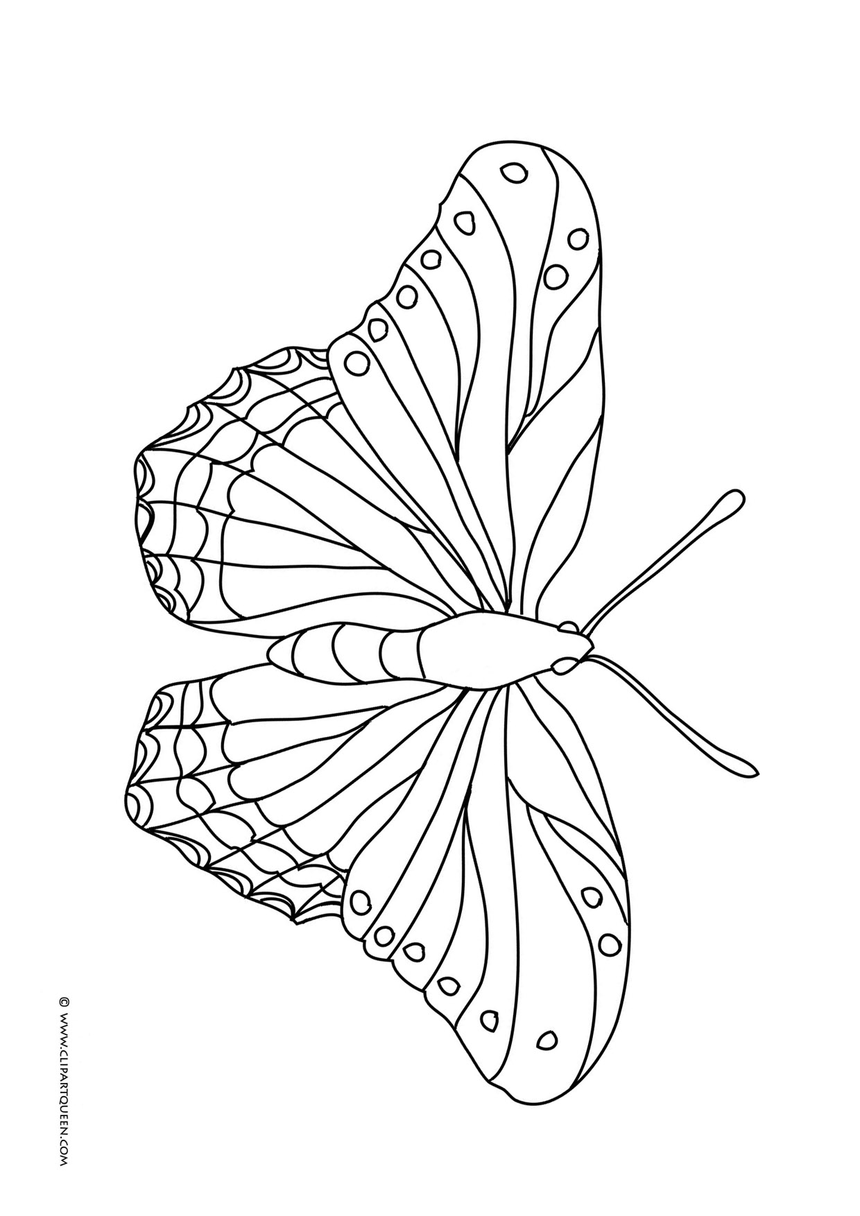 coloring butterfly free printable butterfly coloring pages for kids coloring butterfly