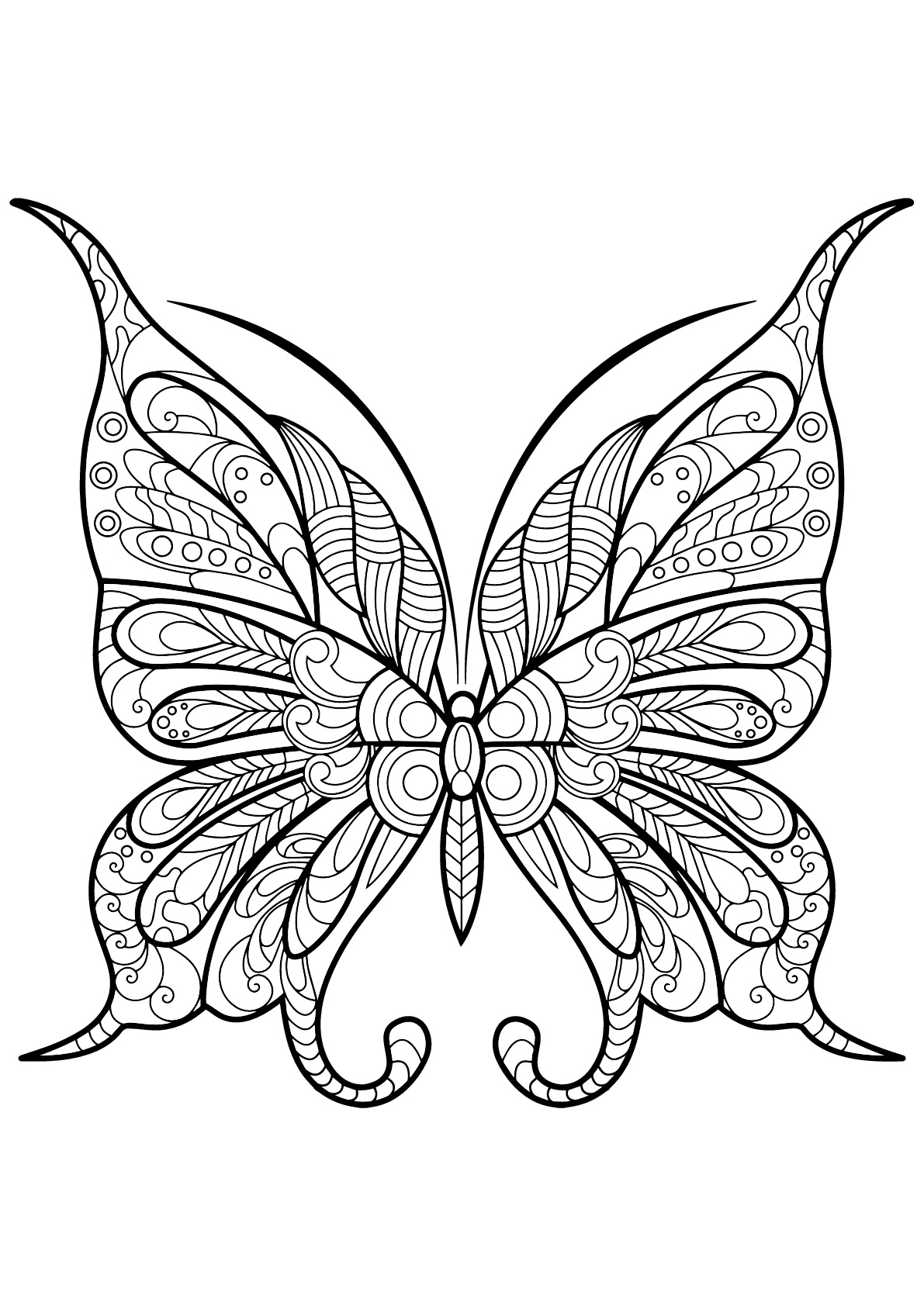 coloring butterfly printable fun butterfly coloring pages for kids art hearty coloring butterfly