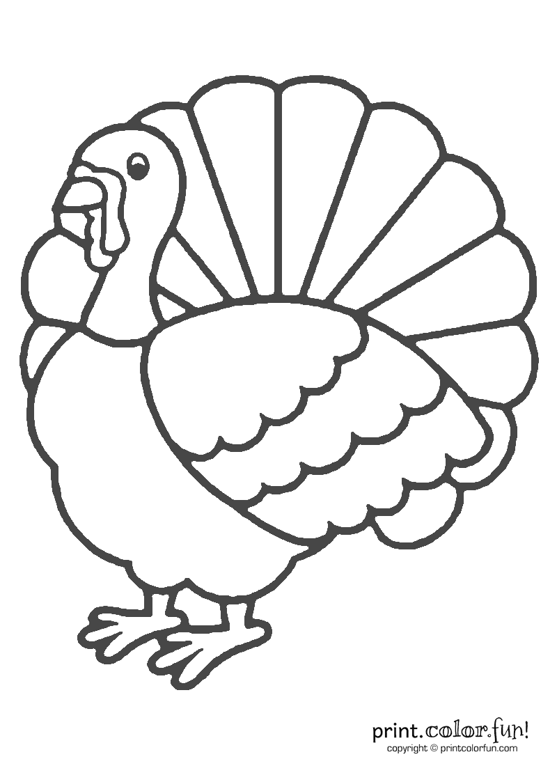 coloring cute turkey clipart clipart panda free clipart images coloring cute turkey clipart