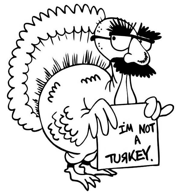 coloring cute turkey clipart cute turkey pictures clipartsco coloring clipart cute turkey
