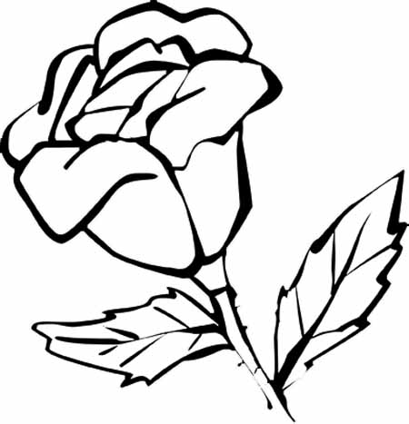 coloring flower cartoon images beautiful flower coloring pages with delicate forms of coloring images cartoon flower