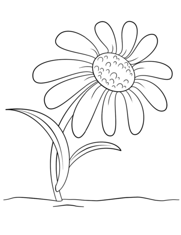 coloring flower cartoon images beautiful flower coloring pages with delicate forms of images flower cartoon coloring